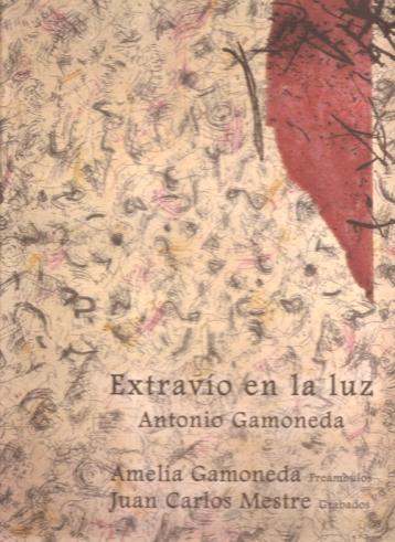 """Portada de """"Extravío en la luz"""", de Gamoneda."""