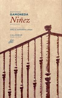 1-Ninez_cubierta