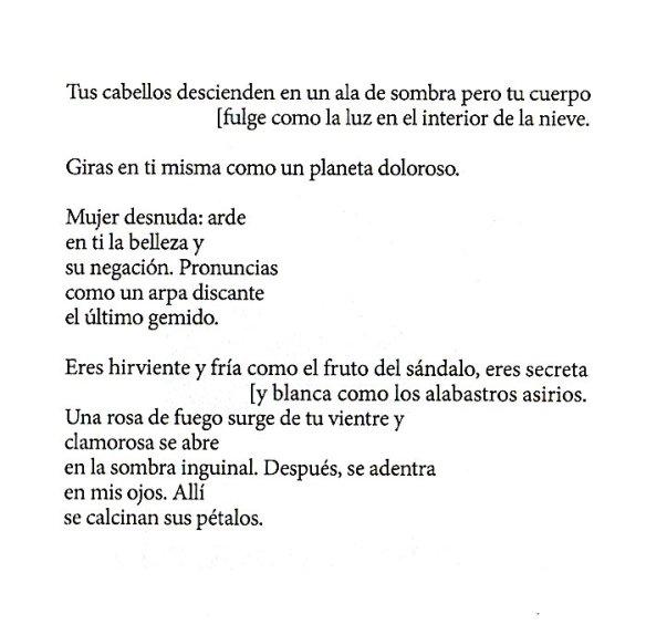 Tus Cabellos Descienden Un Poema De Gamoneda En Español